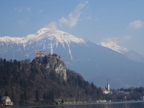 スロベニアのブレッド2