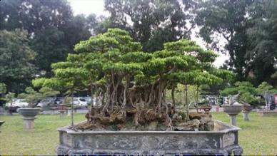 世界遺産タンロン城3