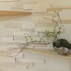 天然木の家で盆栽教室1