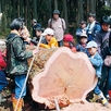 ◆大感動!伐採体験ツアー◆1