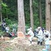 秋の新潟伐採ツアー1