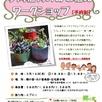 多肉植物の寄せ植えワークショップ1