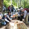 大感動!伐採体験ツアー2