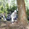 大感動!伐採体験ツアー1