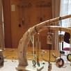 「木のアクセサリー展」3
