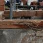 コラム「一体なぜ?新築並みに費用がかかったリフォーム」のサムネイル画像