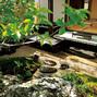 苔庭:上越展示場夢樹の家メイン画像