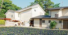 熊本地震に学ぶ安心して暮らせる「地震に強い工法」とは?